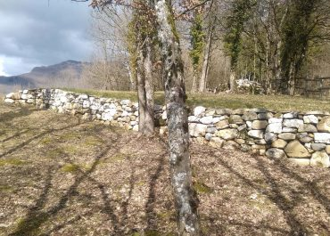 Réhabilitation d'une terrasse agricole en pierres sèches