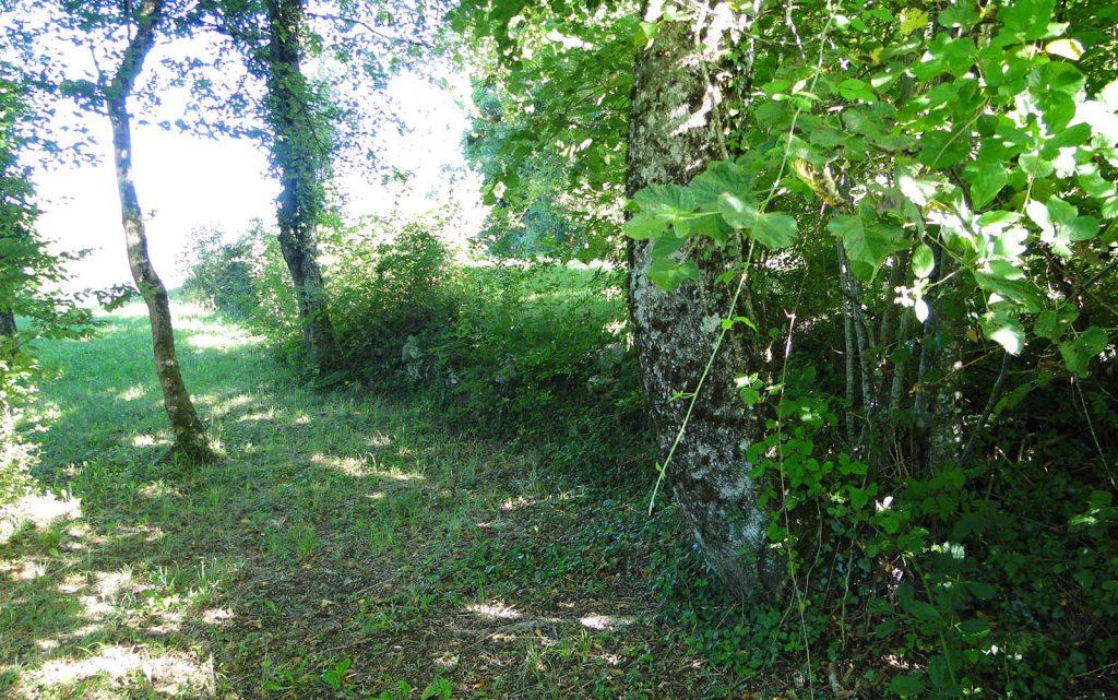 ancien mur en pierres sèches